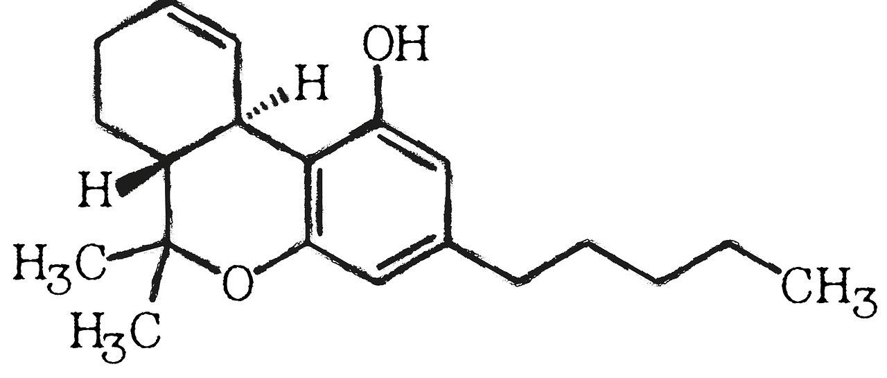Cannabidiol ein wirksames Mittel gegen Erreger und Entzündungen