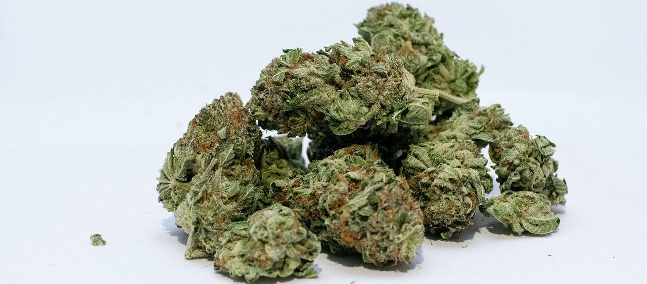 Cannabinoide gegen die Huntington-Krankheit