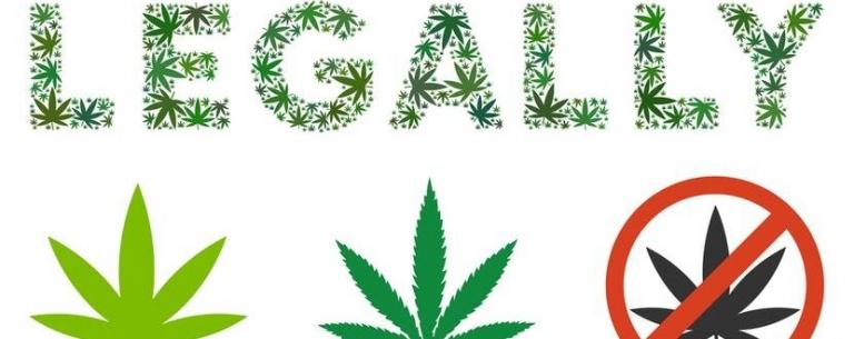 Der aktuelle Wissensstand zur Legalisierung von Cannabis Produkten.