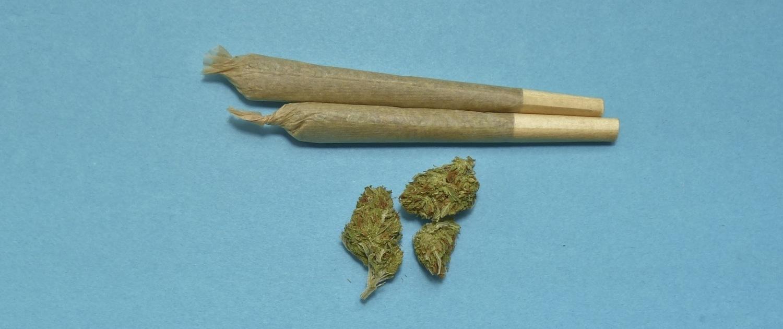Cannabidiol ist im Gegensatz zu THC nicht suchterregend, sondern hilft beim Cannabis Entzug