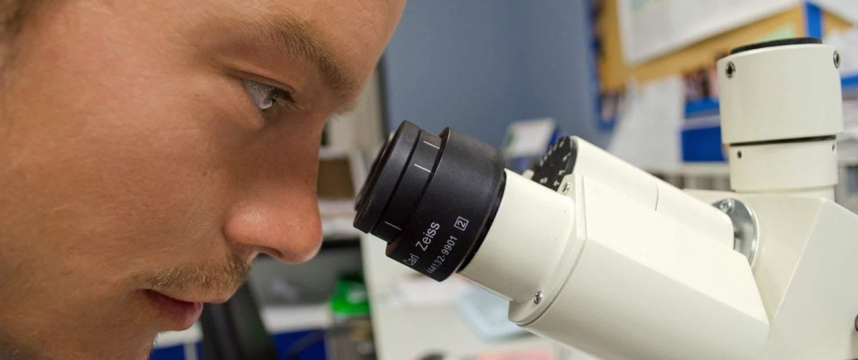In vielen unabhängigen Studien konnte die positive Wirkung von Cannabidiol bereits nachgewiesen werden.