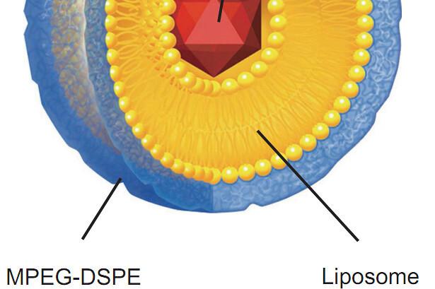 Liposomales CBD anwenden