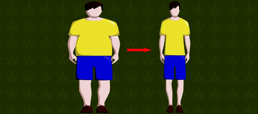 Illustration zu CBD beim Abnehmen