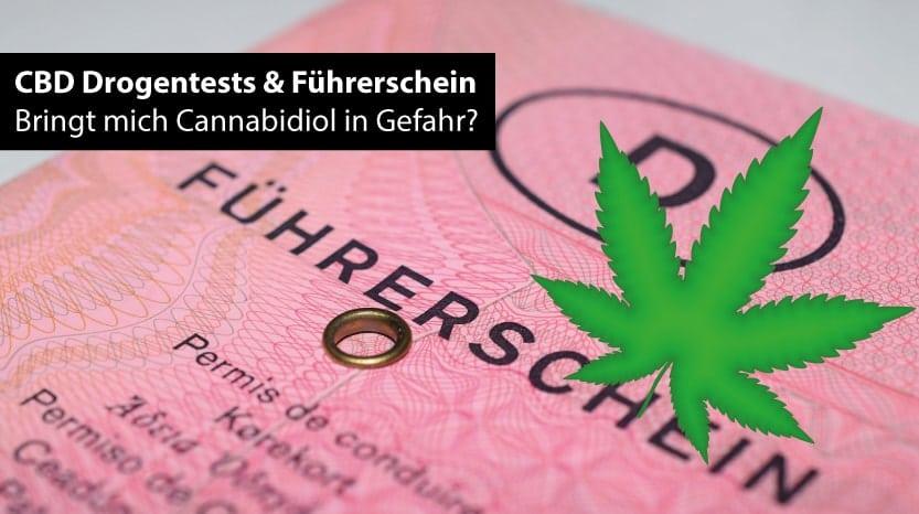 CBD, Führerschein und Drogentest