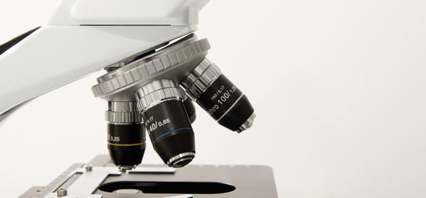 CBD Studien: Mikroskop fotografiert