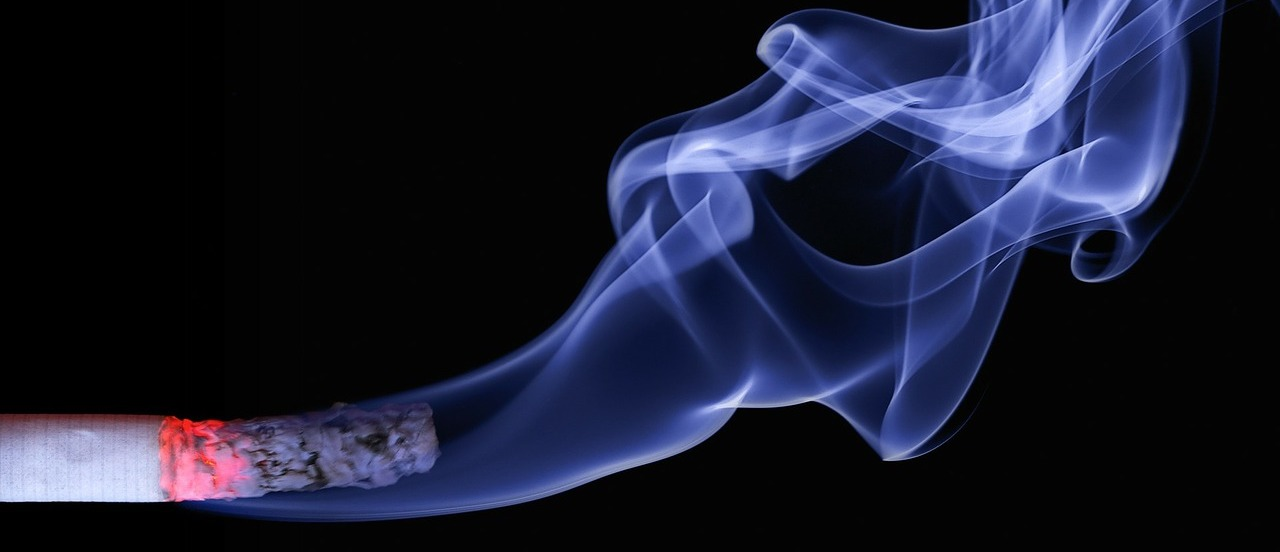 cbd tabak