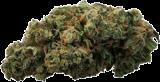 Hocuspocus CBD Blüten Limonchello Haze