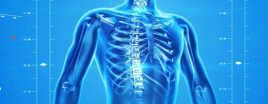 Cannabisöl bei Osteoporose