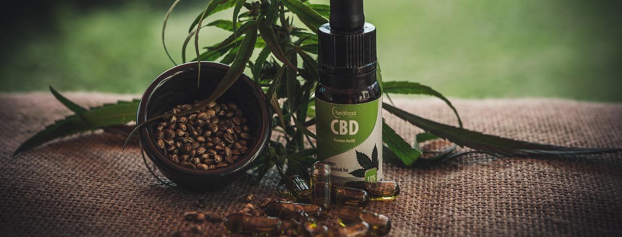 Sind Cannabinoide schädlich für deine Leber