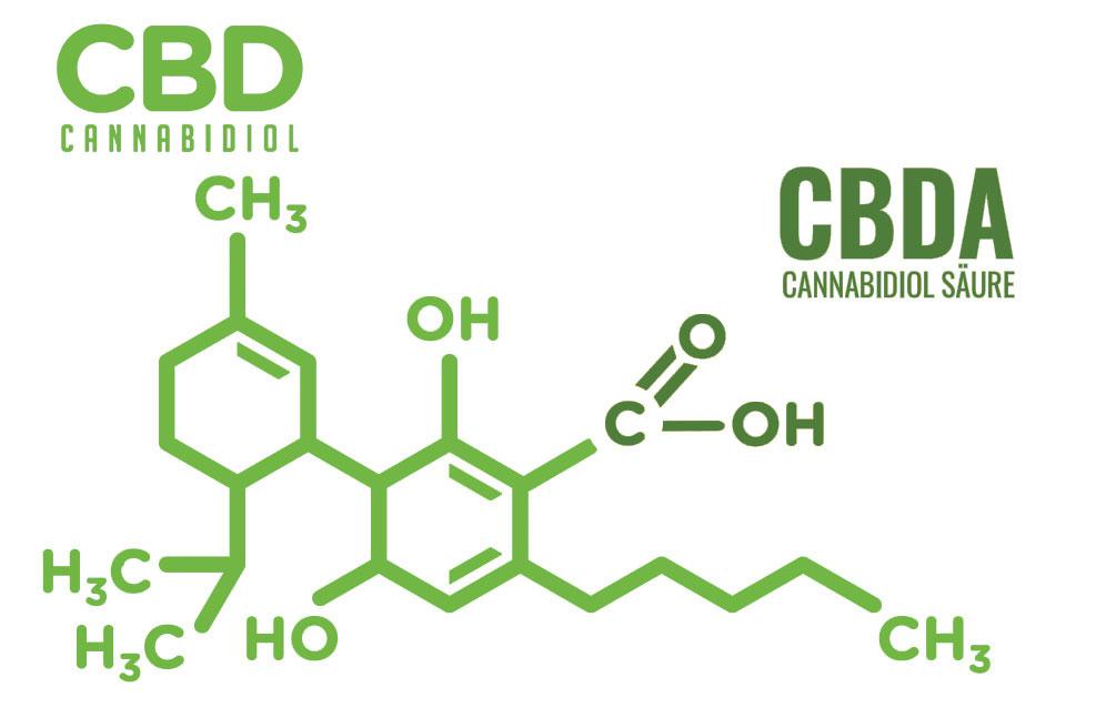 Unterschied CBD vs CBDA